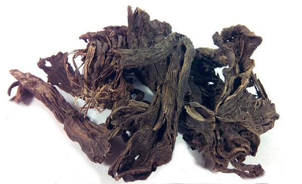 высушенный корень аконита