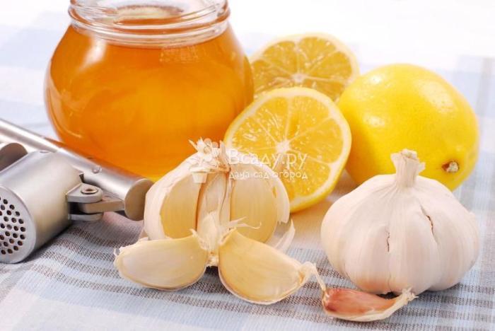 Чеснок с лимоном - полезные свойства