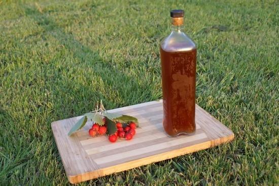 плоды боярышника, можно приготовить настойку самостоятельно
