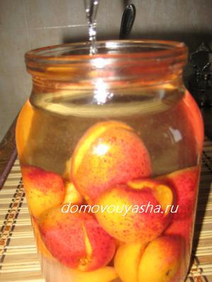 Домашняя настойка абрикосовая.
