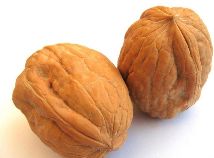 Свежий грецкий орех
