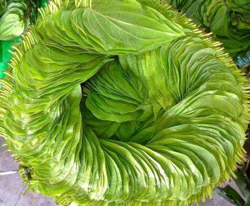 Венок из табачных листьев