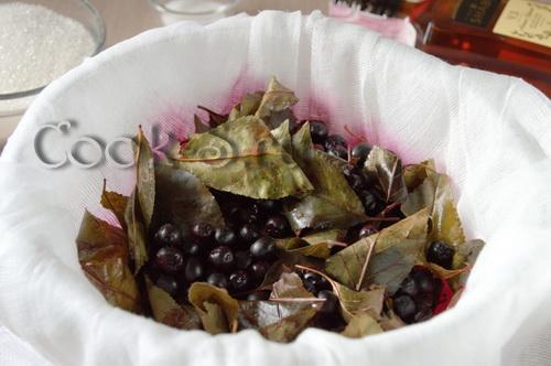 черноплодка с вишневым листом