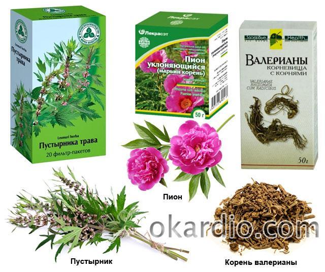 настойки из этих растений помогают в лечении повышенного давления