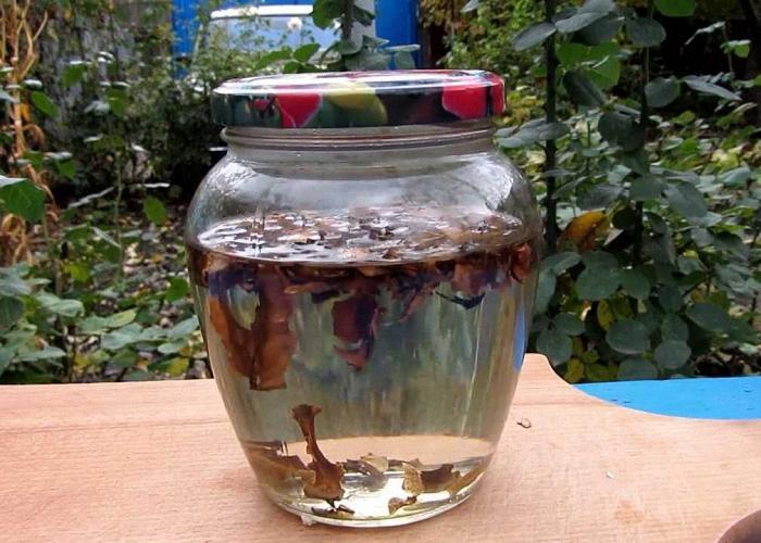 Настойка самогона на перегородках грецкого ореха