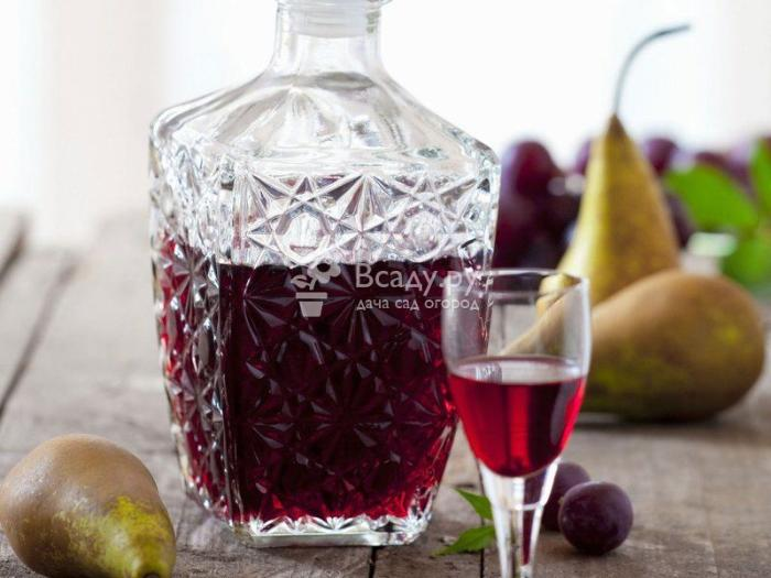 Лучшие рецепты домашних настоек на водке из ягод смородины