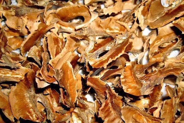 лечебные свойства перегородок грецкого ореха