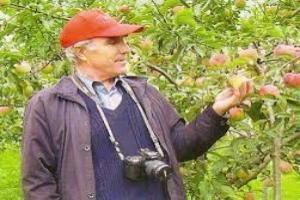яблочный уксус мед и чеснок противопоказания