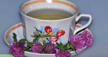 _чашка с чаем из клевера