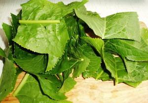 Что содержат листья хрена – применение свойств растения фото