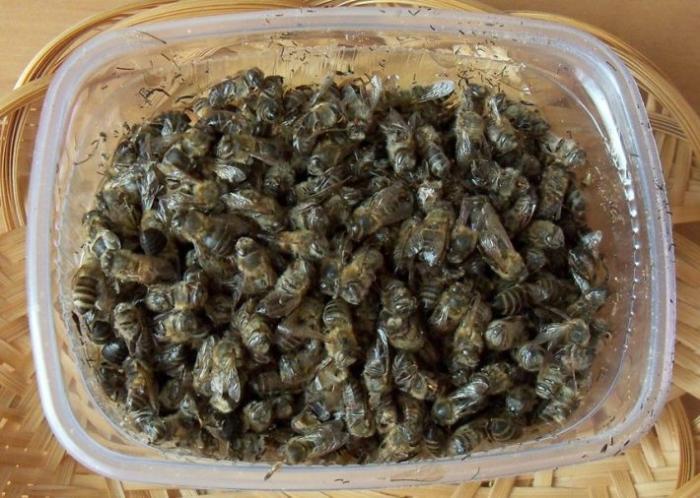 пчелиный подмор настойка