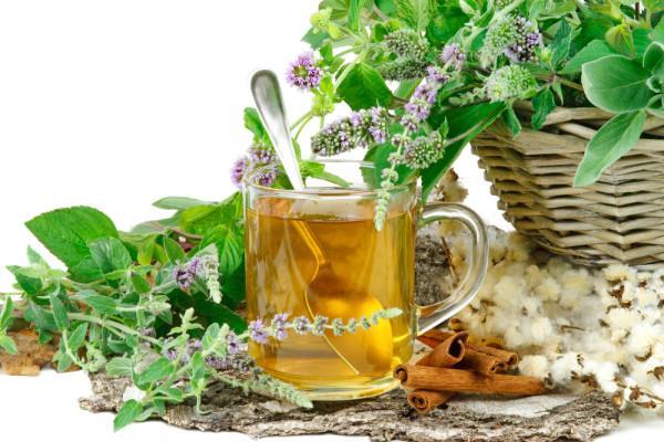 лекарственные травы и чай