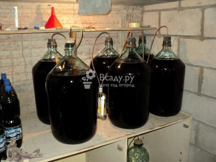 Вино из варенья рябины черноплодной под гидрозатвором