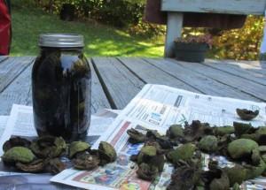 отвар скорлупы грецких орехов