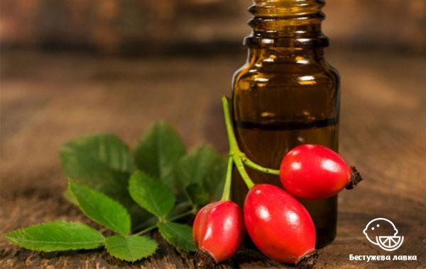Польза и вред шиповника для организма. Применение и свойства масла шиповника