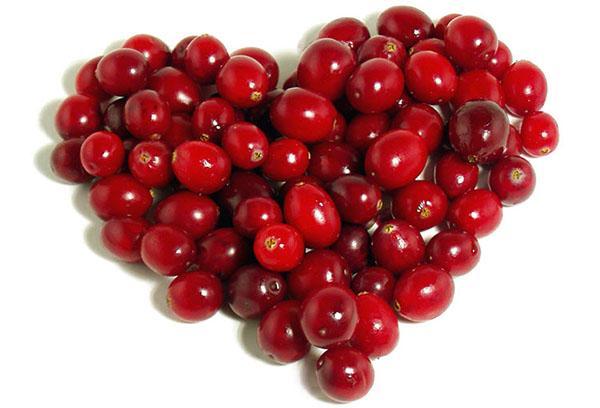 сердечко из ягод боярышника