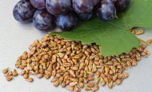 настойка на виноградных косточках