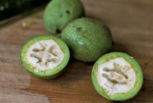 приготовление настойки из зеленых орехов