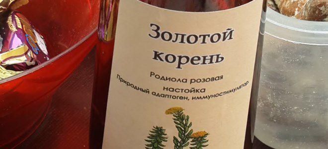 как пить настойку золотого корня