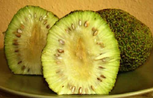 индийское яблоко